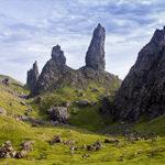Schotland-Hoogland